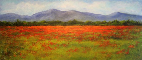 French Poppy Field